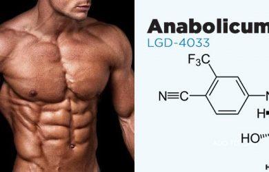 Ligandrol Anabolicum (LGD 4033)